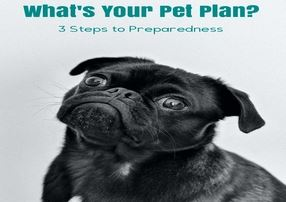 What's Your Pet Plan